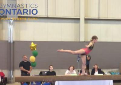 Women's Artistic Gymnastics Championship